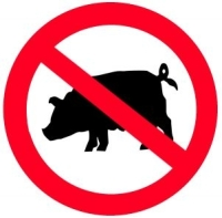 domuz eti neden haram